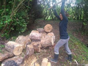 Laure-Anne fendant des tronçons de bois mort déjà attaqués par les insectes pour alimenter le substrat de la butte